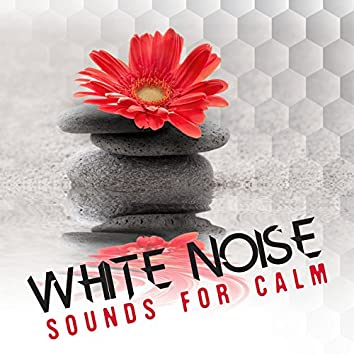 White Noise: Sounds for Calm