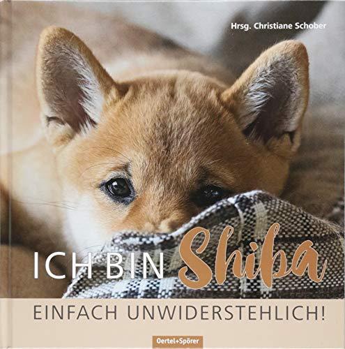 Ich bin Shiba. Einfach unwiderstehlich!