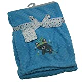 Baby Blanket, Cute Swaddle Wrap with Applique and Embroidery on it, Warm, Cozy, Multipurpose Blankets for Boys and Girls, for Travel, Picnic, Naptime, Nursing Cover (Light Blue Koala)
