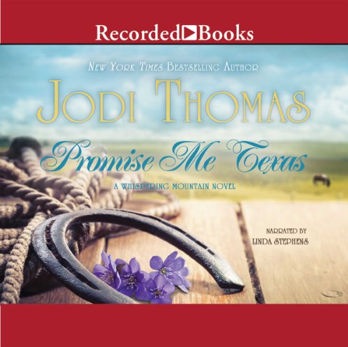 Promise Me Texas audiobook cover art