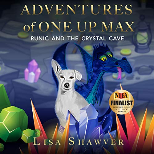 Adventures of One Up Max audiobook cover art