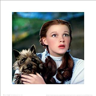 A The Wizard of Oz Dorothy and Toto Classic Musical Movie Film Poster Print (16X16 UNFRAMED Poster)