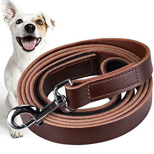 Pawzone Hundeleine aus Leder, Größe XL