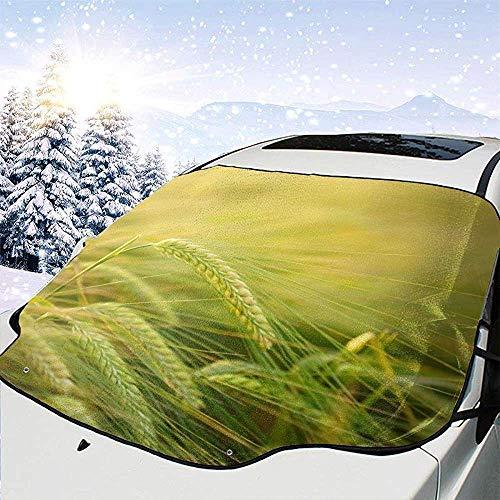 Orzo Coltivazione Cereali Auto Parabrezza Copertura antigelo Protezione antigelo Protezione invernale Auto...