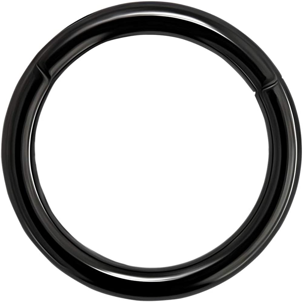 16 Gauge 316L Surgical Steel Hinged Segment Ring Body Piercing Jewelry