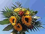 VERSANDKOSTENFREI Blumenstrauß 'Sommersonne' inkl Glückwunschkarte Blumenversand