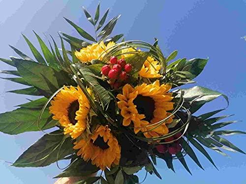 VERSANDKOSTENFREI Blumenstrauß Sommersonne inkl Glückwunschkarte Blumenversand