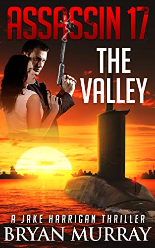 'THE VALLEY' (Assassin Series Book 17) by [Bryan Murray]