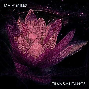 Transmutance