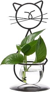 Marbrasse Desktop Glass Planter Hydroponics Vase,Planter Bulb Vase with Holder for Home Decoration,Modern Creative Lovely ...
