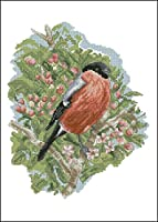 刺繍キット大人用の印刷済みクロスステッチキット枝に立っている鳥11CT刺繍写真DIYアート初心者用クロスステッチキット子供用ユニークなギフト家の装飾、40x50cm