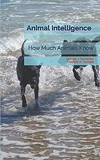 Animal Intelligence: How Much Animals Know