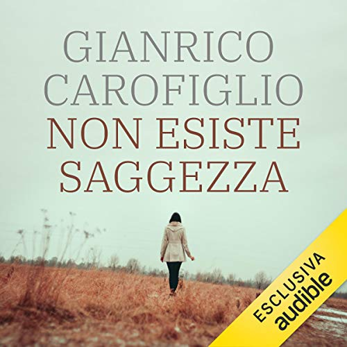 Non esiste saggezza  By  cover art