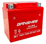 Banshee 5L-BS Motorcycle Scooter Battery YTX5L Replacement