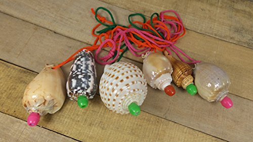 Best Review Of Assorted Seashell Whistles, Set of 12, Party Favors, Conch Horns,