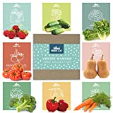 Vegetable Seed Variety Pack for Planting on Your Home or Outdoors Garden - Spring and Summer Vegetable Garden Starter kit   Great for Planting Indoor or Outdoors   Veggie Seeds Packet for Home Garden
