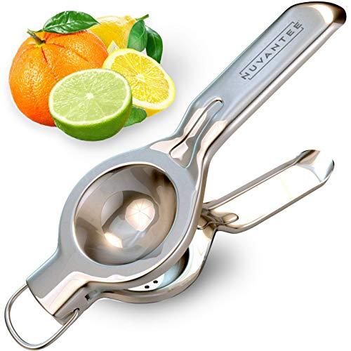 Innovee Home spremiagrumi spremi limone-acciaio inox 18/10di qualità con limone Recipes e-book