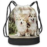 DSGFSQ Sporttaschen Turnbeutel Dog Corgi Men & Women Sport Gym Sack Drawstring Backpack Bag...