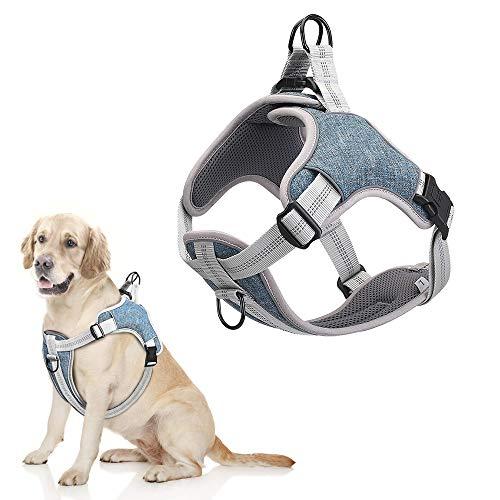 Rmine Hundegeschirr für Mittelgroße und Große Hunde Breathable Adjustable Padded Reflective Anti Pulling (Größe L, Blau)