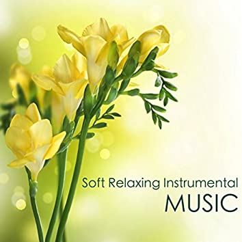 Soft Relaxing Instrumental Music: Inspirational Songs for Calming, Inner Peace of Mind and Concentration