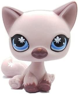 wdd Littlest Pet Store Lightly Purple Short Hair Cat Toy LPS