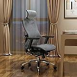 SIHOO V1 Ergonomischer Bürostuhl, mit Kopfstütze, Sitz und Rückenlehne, 4D-Armlehnen und verstellbarer Lendenwirbelbereich, atmungsaktiver Netzstoff, Bürostuhl (grau)