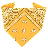 ...KARL LOVEN - Bandana 100% algodón - Paisley Naranja - Pañuelo para el cuello, cabeza bufanda para hombre, mujer y niño muñeca Pulsera motociclista Deportiva