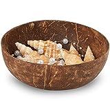 EPT-Home Kokosschale Kokos Schale Bowl Dekoschale Deko Holzschale Fair Trade (2 Stück) - 5