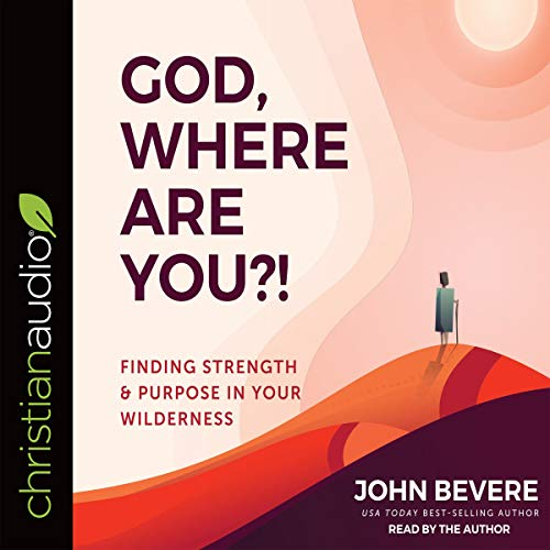 God, Where Are You?! audiobook cover art