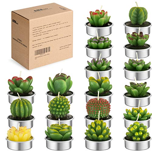 AMASKY Handmade Delicate Succulent Cactus Candles for Birthday Party Wedding Spa Home Decoration (18 Packs)