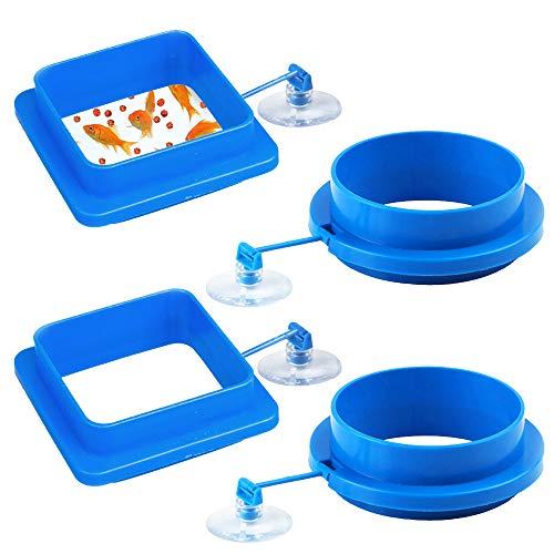 RETON 4er Pack Futterring zur Erhöhung der Aquarium-Zufuhr Schwimmender Nahrungskreis für Guppy, Goldfish und Andere Kleinere Fische (2 Quadrat & 2 Runde)