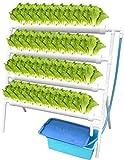 Kit de cultivo hidropónico, sistema de plantación hidropónica de Vogvigo para hortalizas 36 ubicación 4, kit de herramientas de plantación hidropónica