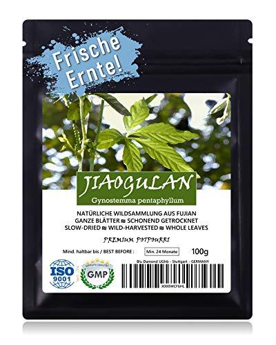 JIAOGULAN (Unsterblichkeitskraut) - Natürliche Wildsammlung   Ganze Blätter   TOP-Qualität vom Original   GMP + ISO-9001-zertifiziert   100% rein + frisch + laborgeprüft + schonend getrocknet   100g
