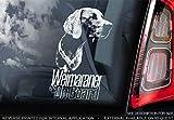 Sticker International Weimaraner - Autoaufkleber - Hund Schild Fenster, Stoßstange Aufkleber Geschenk - V004 - Weiß/Klar - Externe Außen Aufdruck, 180x100mm