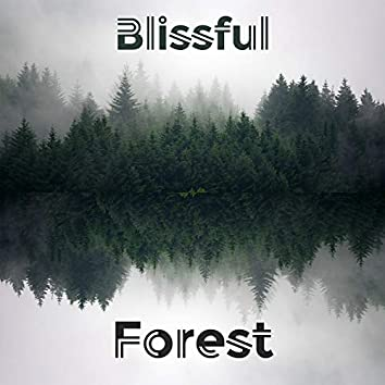 Blissful Forest - Spa Music Collection by Musical Spa