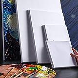 Set de lienzos para pintar para todo tipo de pintura,acrílico, oleo, acuarela, lienzos 100% algodón sin ácidos con bastidor de madera para telas blancas (5 piezas, 20 x 25 cm)