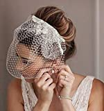 Heread 1920s Lace Bride Wedding Birdcage Veil...