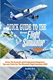 QUICK GUIDE TO THE MICROSOFT FLIGHT SIMULATOR 2020 : Know The Essential and Fundamental Beginner's Tips and Tricks For The Microsoft Flight Simulator 2020 (English Edition)