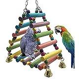 Yxp Jouet Perroquet en Bois coloré Rainbow Bridge pour Jouets de Formation pour Les Petites et Moyennes perroquets et Oiseaux colorés à l'attention de l'animal