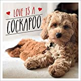Love is a Cockapoo: A Dog-tastic Celebration of the World's Cutest Breed