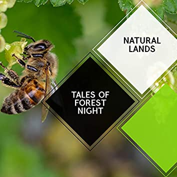 Tales of Forest Night - Natural Lands