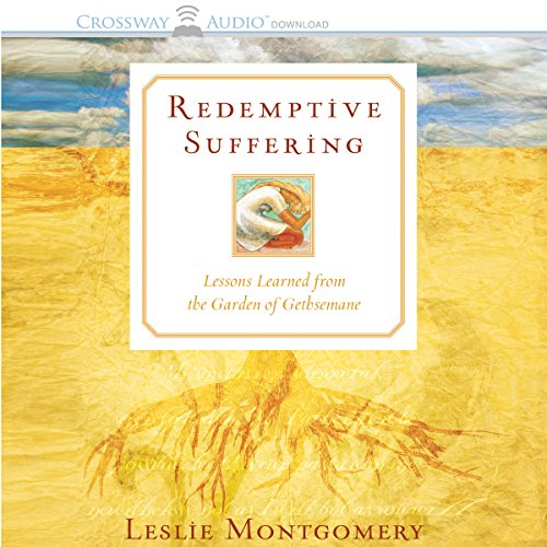 Redemptive Suffering audiobook cover art