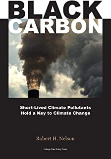 Black Carbon: Short-Lived Climate Pollutants Hold a Key to Climate Change