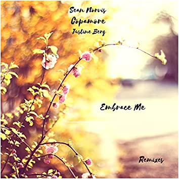 Embrace Me Remixes