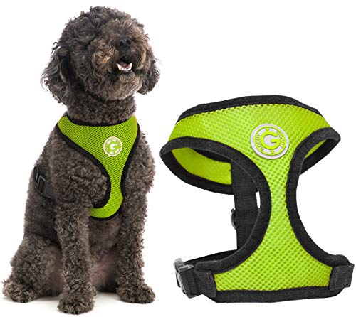 Gooby Dog Harness - Green, Small - Soft Mesh Head-in Small Dog Harness with Breathable Mesh - Perfect on The Go Mesh Harness for Small Dogs or Cat Harness for Indoor and Outdoor Use