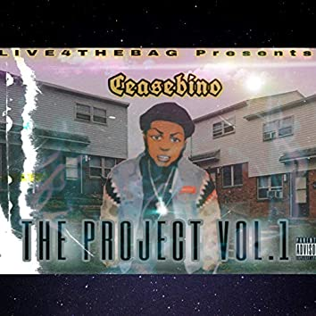 THE Project, Vol. 1
