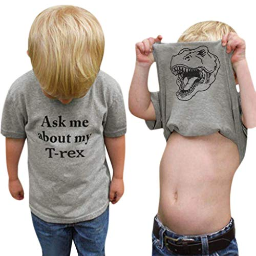 Baby Ask me About My moo Cow/T-rex, Toddler Kids Baby Boys T-Shirt Short Tops Funny Tees (Gray - T rex, 2-3T)