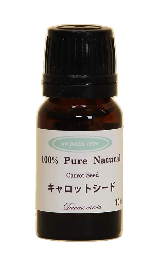 女王すべき拒絶するキャロットシード 10ml 100%天然アロマエッセンシャルオイル(精油)