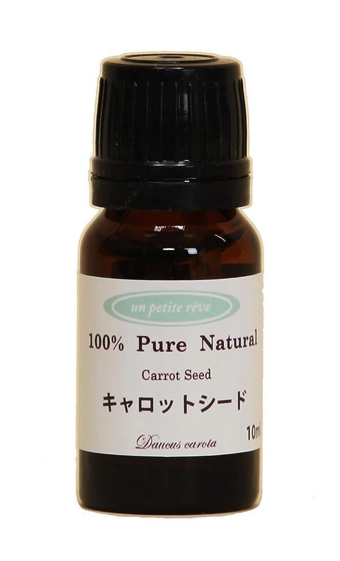 発症無視勇敢なキャロットシード 10ml 100%天然アロマエッセンシャルオイル(精油)