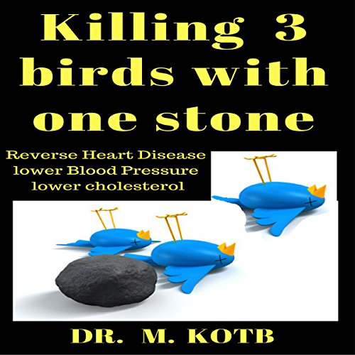 Killing 3 Birds with One Stone audiobook cover art